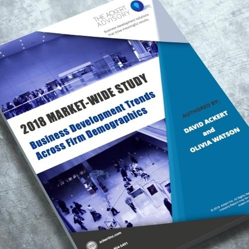 Booklet of a market-wide study on business development trends across firm demographics